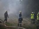 Brandeinsatz Altschwendt_17