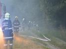 Brandeinsatz Altschwendt_4