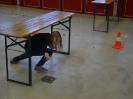 Volksschule Raab_13