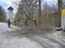 Sturmtief Niklas_1