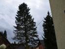 Sturmtief Niklas_22