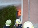 Brand Enzenkirchen_7