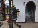 Rauchfangbrand  Niederham_20