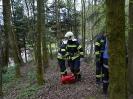 Gemeinschaftsübung FF Raab & FF ST Bründl_22