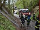 Gemeinschaftsübung FF Raab & FF ST Bründl_54