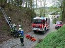 Gemeinschaftsübung FF Raab & FF ST Bründl_89