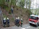 Gemeinschaftsübung FF Raab & FF ST Bründl_91