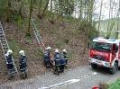 Gemeinschaftsübung FF Raab & FF ST Bründl_92