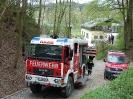 Gemeinschaftsübung FF Raab & FF ST Bründl_98