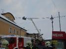 Brand Enzenkirchen Autzinger_16