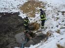 Biogas_12