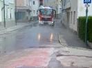 Straßen Verschmutzung_14