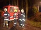 Brandeinsatz durch Silvesterrakete  _12